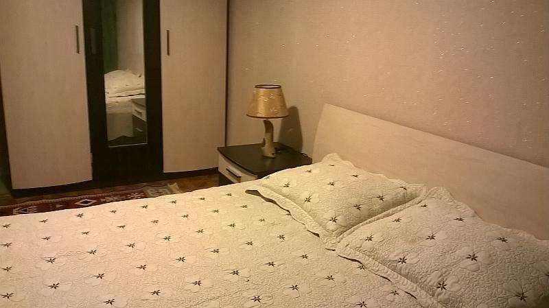 1-комнатная квартира, станция метро Пушкинская. WI-FI. Часы-сутки-недели. Круглосуточно. Фото