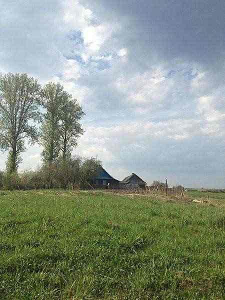 Продается дом в Поставском районе. Фото