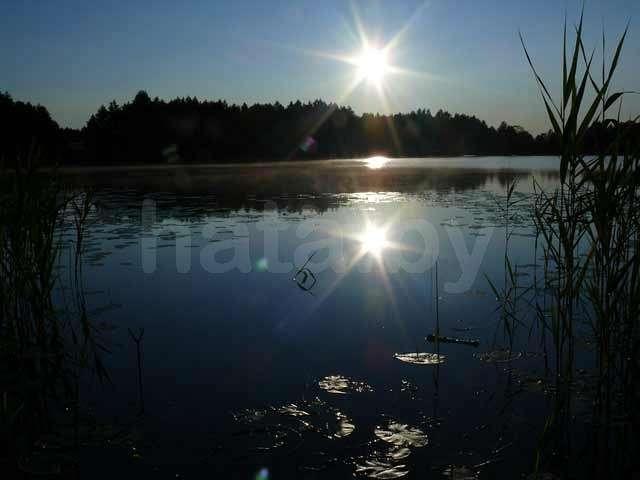 Тихий хутор,отдых на Браславе.. Фото