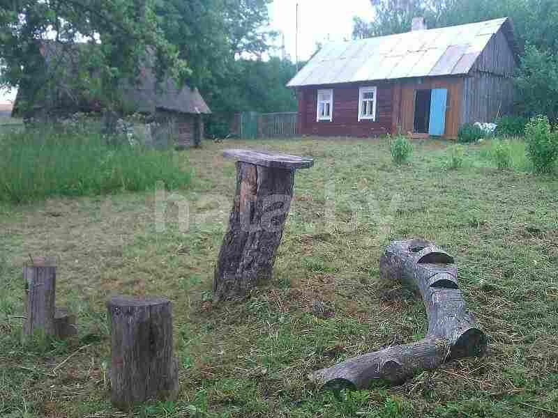 Деревенский дом с участком на лето. Фото