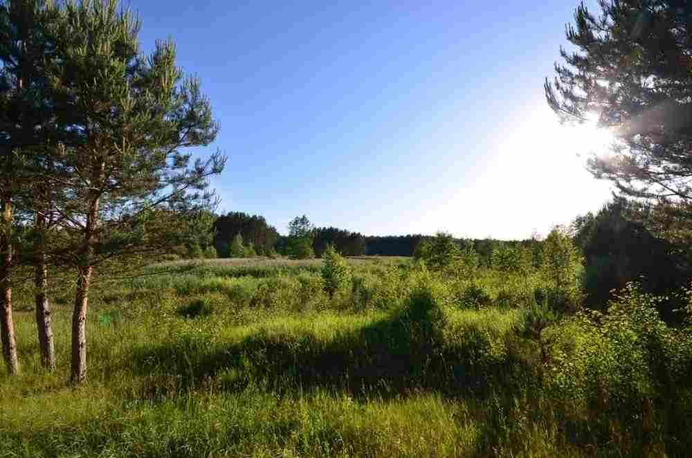 Продается участок 88.0 м2, Литва, Вильнюс. Фото
