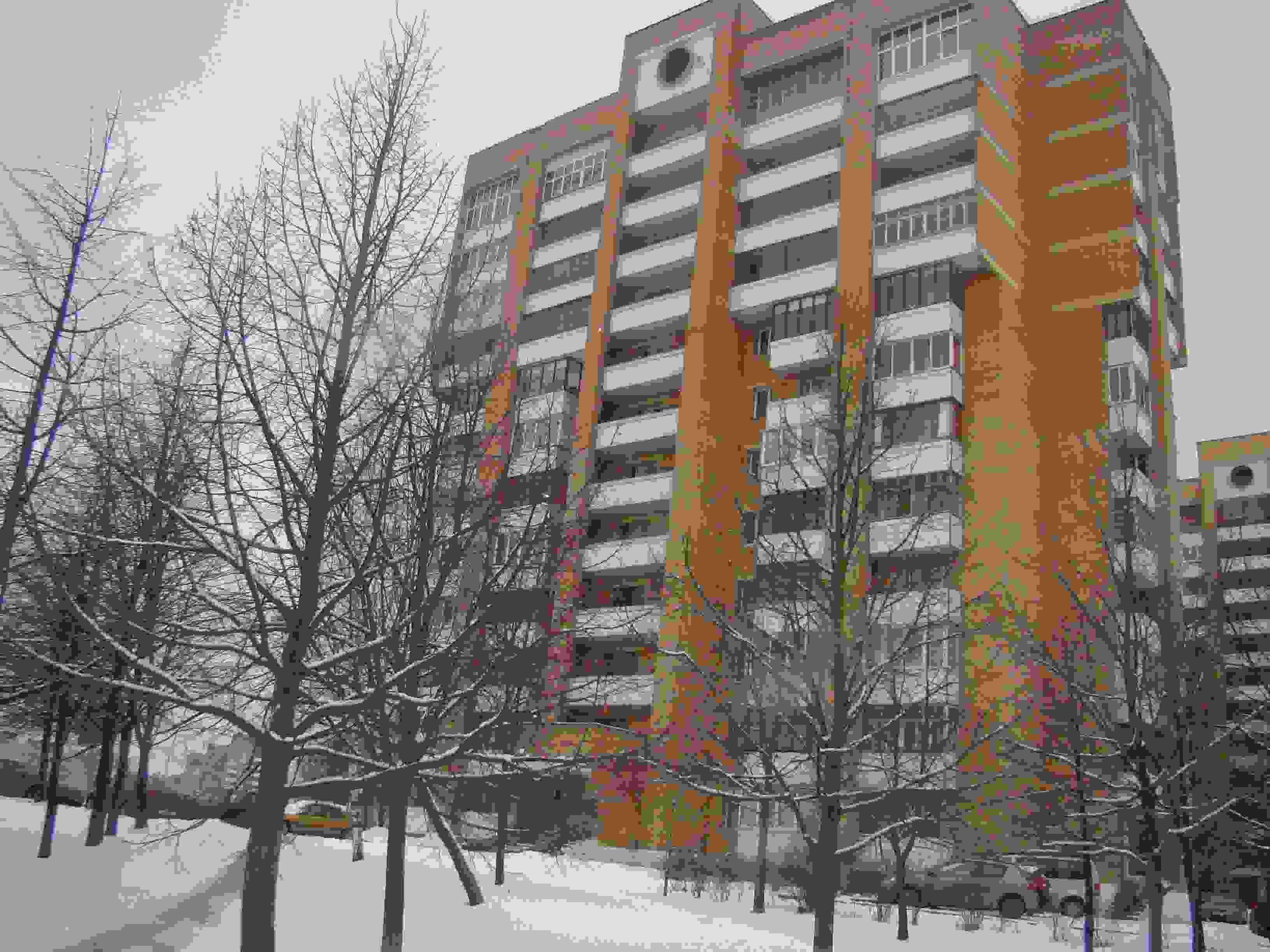 Однокомнатная квартира в Веснянке. Фото