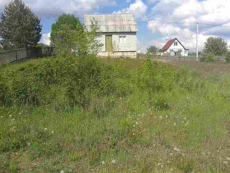 Земельный участок с домом в д. Добренево