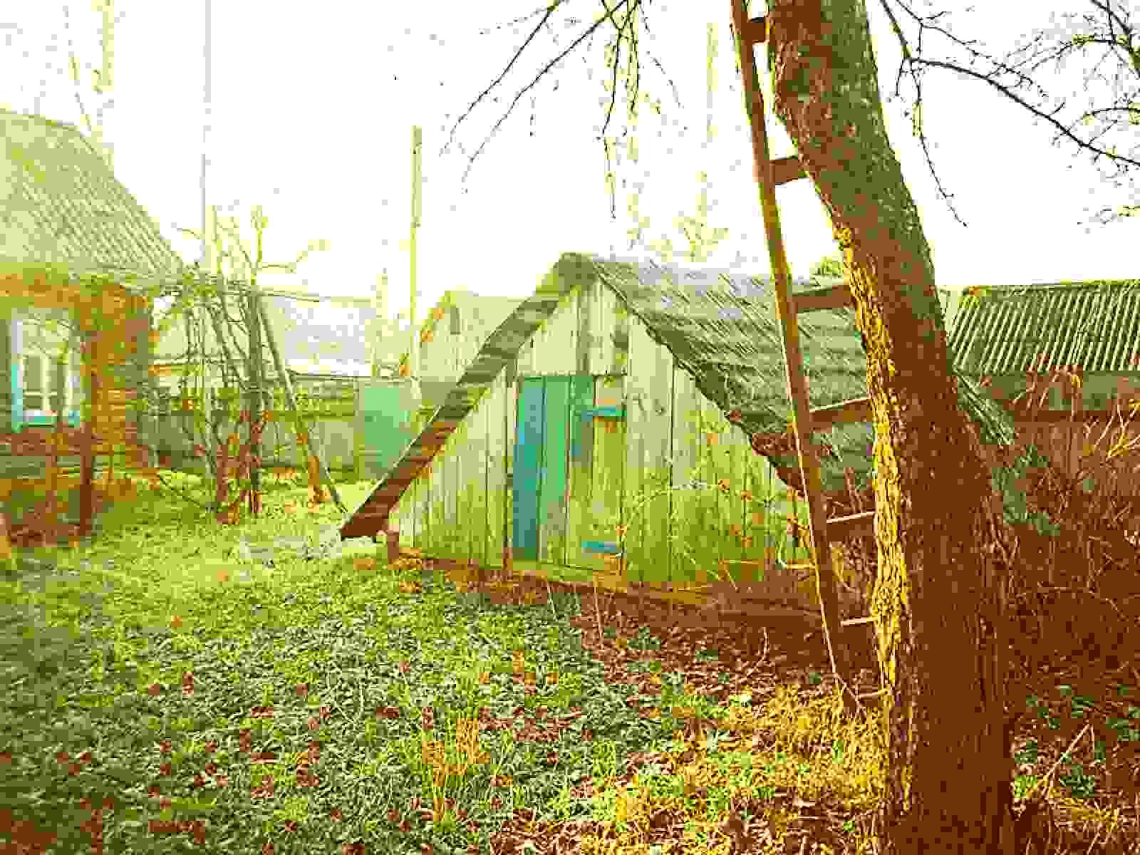 Дом в деревне Деражичи. Фото