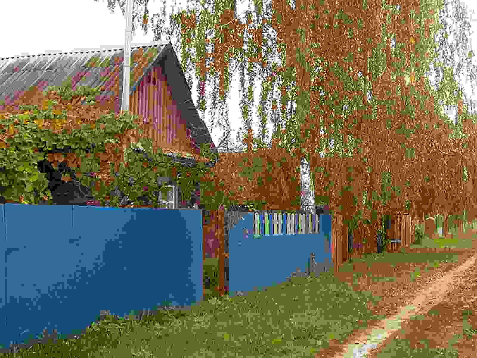 Дом в деревне Деражичи