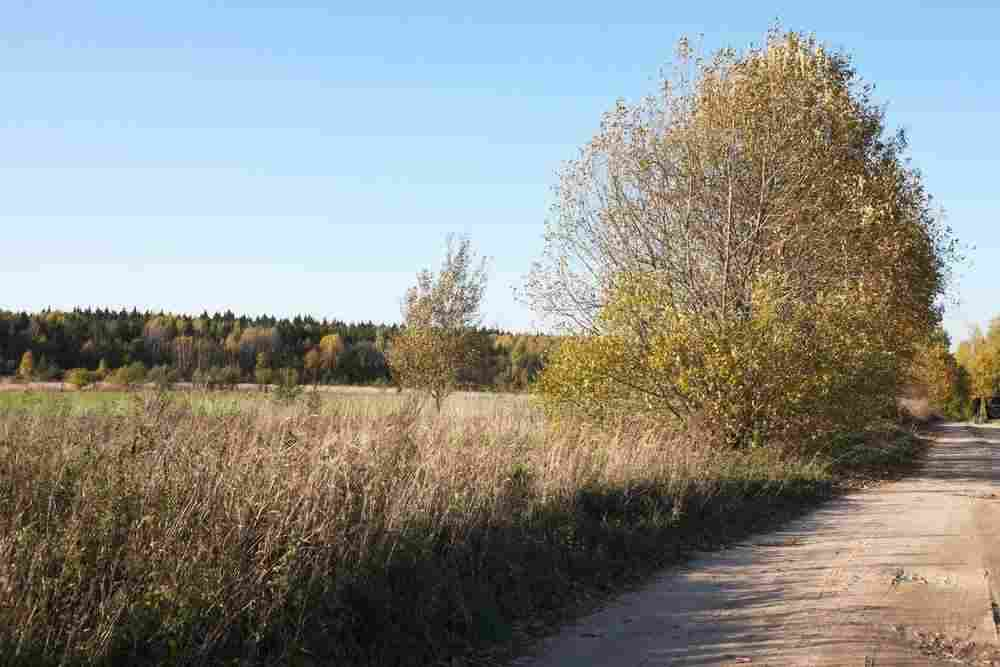 Продается участок 1250.55 м2, Литва, Вильнюс. Фото