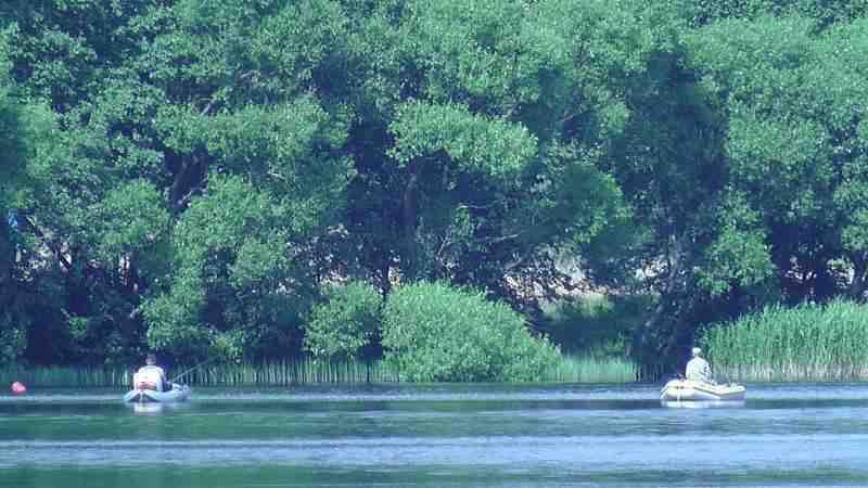 Усадьба с баней и озером(  до 100 чел.). Фото