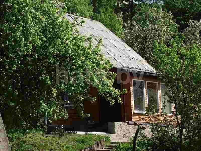 Агроусадьба Маёнтак отдых на Припяти. Фото